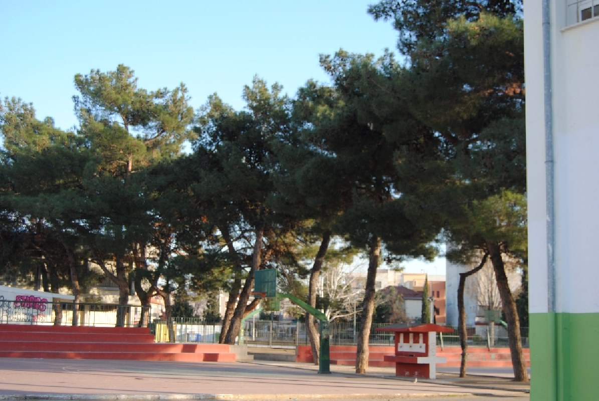 schoolyard-05