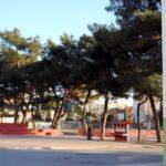 schoolyard-06