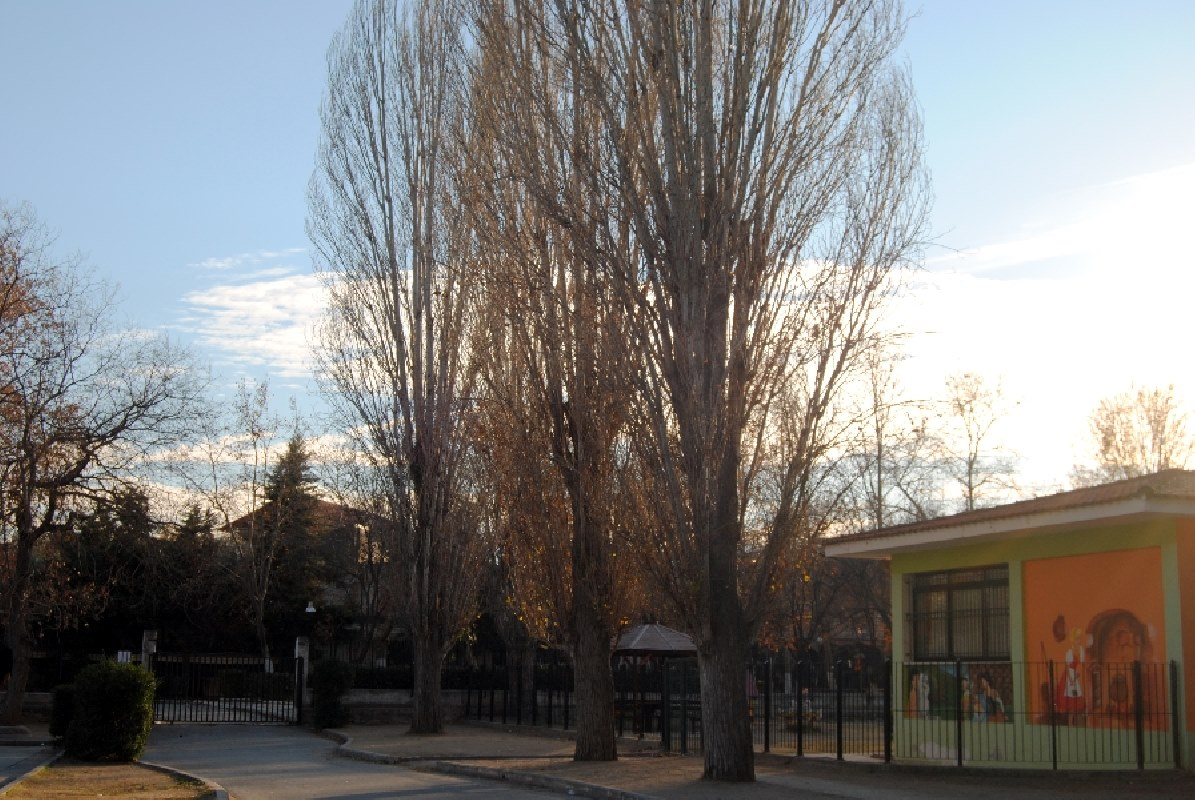 schoolyard-09